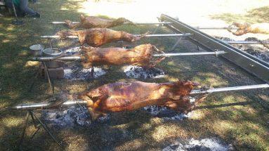 Feira do gado geral em Fraiburgo