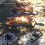 feira do gabo Geral e Michuim (1)