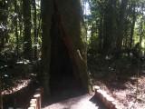 Inauguração do Eco Parque em Xaxim