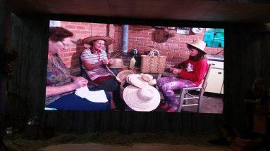 Caxias do Sul na festa da UVA reunião da Frente Parlamentar da Vitivinicultura e Fruticultura