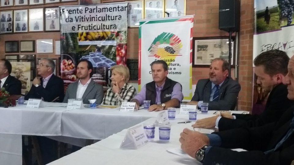 Colatto participa de reunião da Vitivinicultura na Festa da Uva