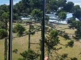 Bom Jardim