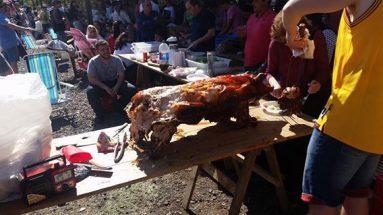 Festa nacional do leitão (FENAL) em Concórdia